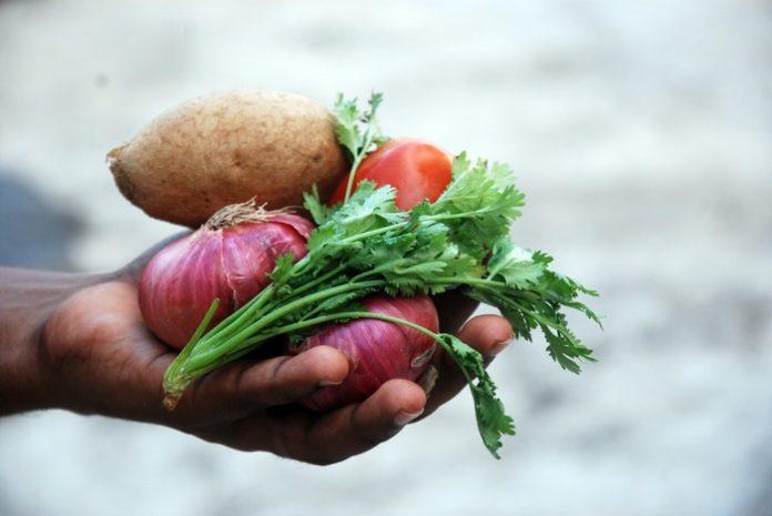 verdure isq alimenti